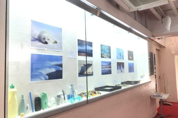 【アップリンク渋谷】自然写真家 高砂淳二さん トーク 12月13日(日)10:35上映後トークのご案内
