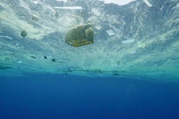 映画『プラスチックの海』上映者募集